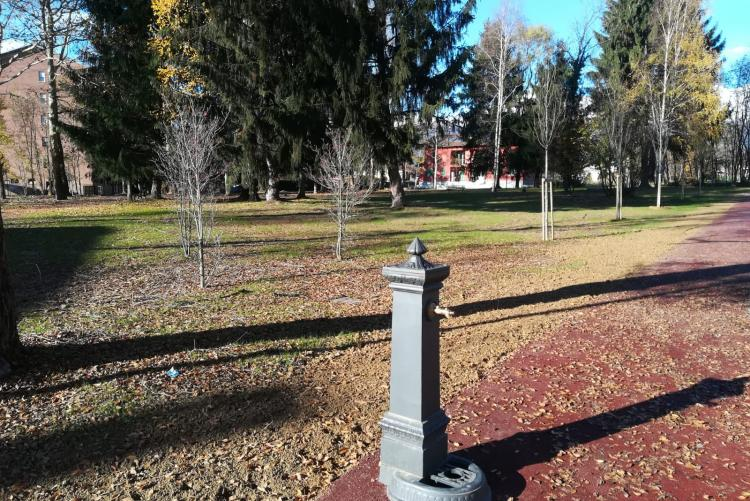 Il parco Robinson di Pavignano
