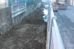 La pulizia del rio Arico
