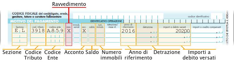 Immagine del modello F24 semplificato