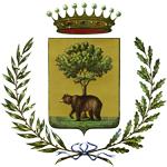 Logo Citta' di Biella